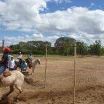 cavalgada em homenagem ao cel manoel jose de almeida 20120722 1043111682