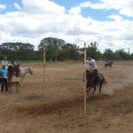 cavalgada em homenagem ao cel manoel jose de almeida 20120722 1210250169