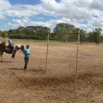 cavalgada em homenagem ao cel manoel jose de almeida 20120722 1278036619