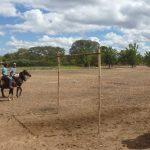 cavalgada em homenagem ao cel manoel jose de almeida 20120722 1299045770