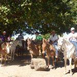 cavalgada em homenagem ao cel manoel jose de almeida 20120722 1355540634