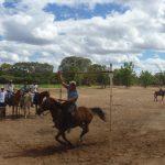 cavalgada em homenagem ao cel manoel jose de almeida 20120722 1431408998