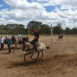 cavalgada em homenagem ao cel manoel jose de almeida 20120722 1488291254