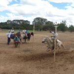cavalgada em homenagem ao cel manoel jose de almeida 20120722 1559706072