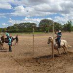 cavalgada em homenagem ao cel manoel jose de almeida 20120722 1694799306