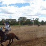 cavalgada em homenagem ao cel manoel jose de almeida 20120722 1699455235