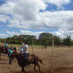 cavalgada em homenagem ao cel manoel jose de almeida 20120722 1793595569