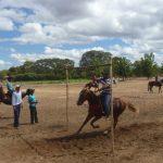 cavalgada em homenagem ao cel manoel jose de almeida 20120722 1862752425