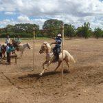 cavalgada em homenagem ao cel manoel jose de almeida 20120722 1907885253