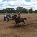 cavalgada em homenagem ao cel manoel jose de almeida 20120722 1911563523