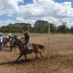 cavalgada em homenagem ao cel manoel jose de almeida 20120722 2033936066