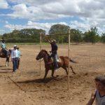 cavalgada em homenagem ao cel manoel jose de almeida 20120722 2060530097