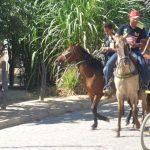 cavalgada em homenagem ao cel manoel jose de almeida 20120722 2077060538